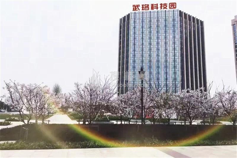 武珞科技园